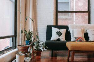 צמחים בעיצוב הדירה